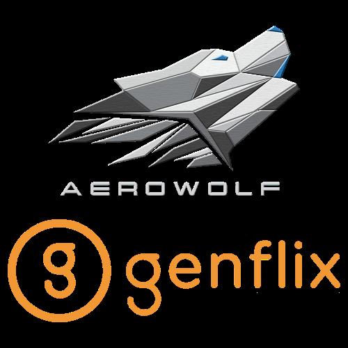 logo-team-GFLX